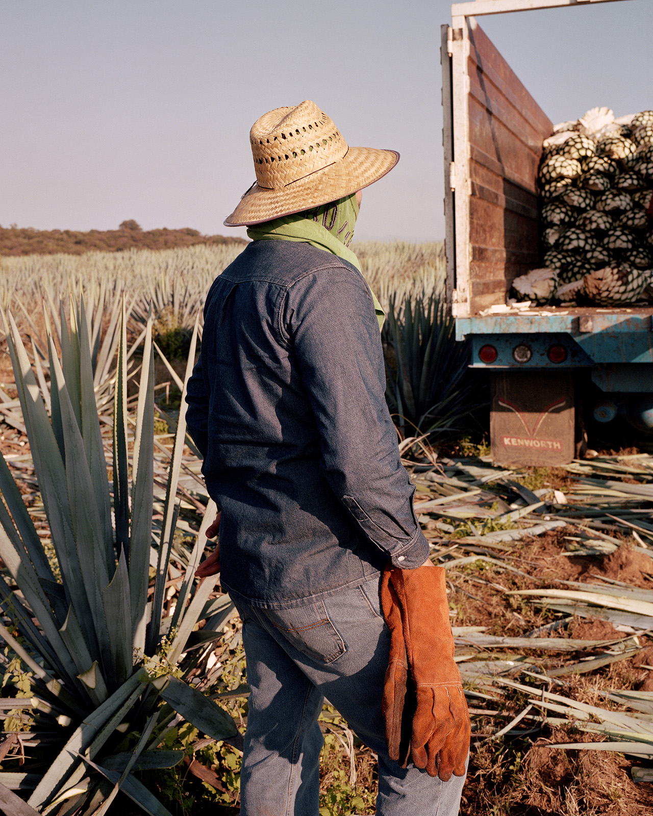 "Documented the tequila making process in Jalisco, Mexico and helped build brand recognition with an emerging boutique tequila by traveling through Mexico and capturing different aspects of ""taking it slow"""